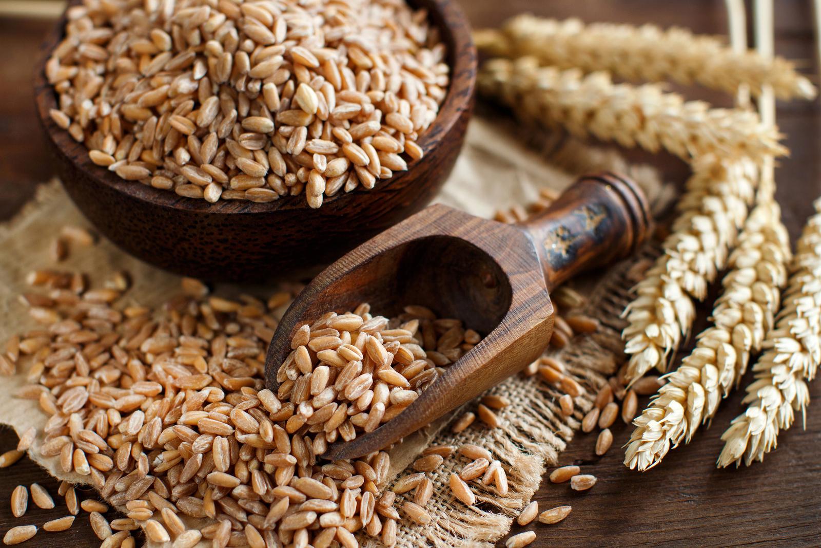 I cereali integrali: quali sono e perché sono importanti